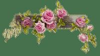pink roses border deco