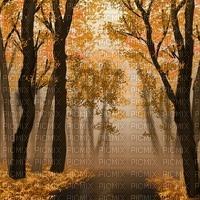 autumn forest bg