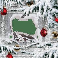 winter pine tree frame cadre hiver noel
