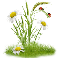 Kaz_Creations Deco Garden Spring Flowers Ladybug Grass