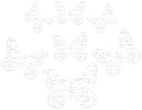 white butterfly deco