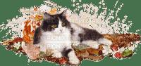 Cat.chat.gato.Victoriabea