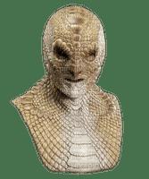 Kaz_Creations Snakes Snake Head Face