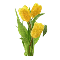 Pâques.Fleur.Easter.Plants.Flower.Tulipes.yellow.Tulips.Bouquet.Plante.Victoriabea