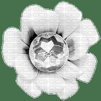 Flower.White