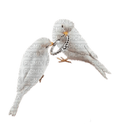 doves with ring