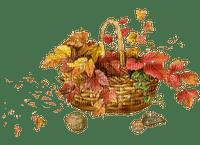 automne panier  feuilles autumn basket leaves