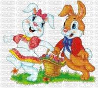 Couple de lapins