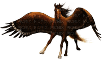 pegasus horse pferd cheval animal animals tier tube fire feu feuer fantasy fantasie brown Pégase