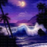 Blue night beach