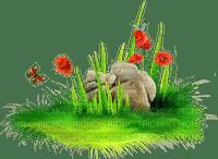 grass stones border FLOWER BORDER herbe pierre fleur bordure