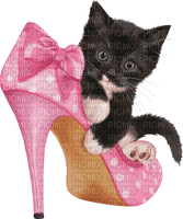Pois rose Chaussure