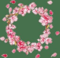 Sakura fleur rose pink flower cadre frame