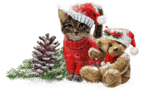 christmas noel teddy bear cat chat deco