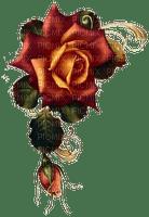 vintage rose red tube deco fleur flower spring printemps