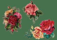 vintage, ruusu, ruusut, roses