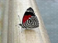 image encre color papillon edited by me