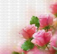 multicolore image encre la nature printemps bon anniversaire fleurs coin mariage rosa edited by me