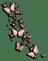 Brown Butterflies