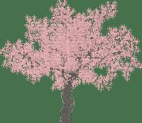 Baum/tree