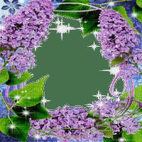 frame lilac  cadre fleur lilas