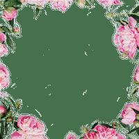 peony frame cadre fleur pivoine