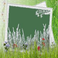 GREEN FRAME spring   FLOWER   MEADOW cadre fleurs   vert printemps