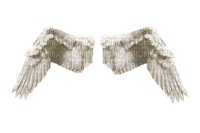 siivet asuste the wings accessories