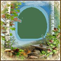 forest frame cadre forêt