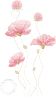 Coquelicots roses coquelicot rose fleur rose bulles fleurs roses Debutante nature pink flower pink poppy