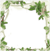 Cadre.Frame.green.plants.Victoriabea