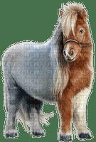pony western  tube  occidental wild west horse pferde cheval animal animals native american