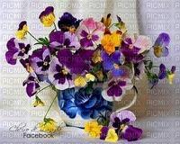 MMarcia fundo flores