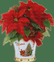 Plants.plante.Pot.Christmas.Noël.Victoriabea