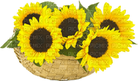 sunflower basket panier tournesol