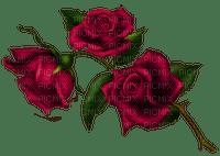 fleur,rose,red,deko,Pelageya