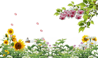 loly33 frame fleurs