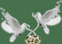 doves wedding rings deco