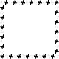 black/white butterfly frame