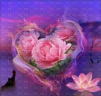 MMarcia fundo coração rosas coeur