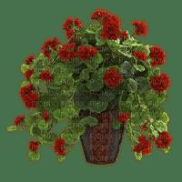 Pot.Vase.Plants.Victoriabea