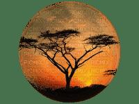 paysage Afrique