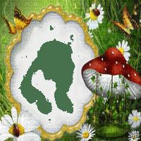 forest fantasy frame cadre forêt
