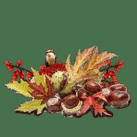 automne feuilles châtaigne deco autumn leaves chestnuts