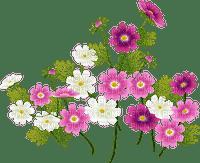 Fleur.Flower.Plants.Victoriabea