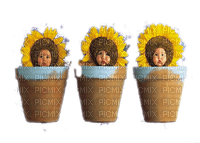 baby sunflowers bebe tournesol