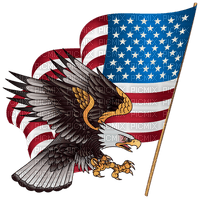 Kaz_Creations America 4th July Independance Day American Eagle Flag