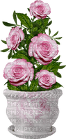 Pot de roses roses vintage