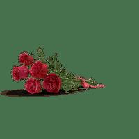 fleur flower kukka ruusu rose