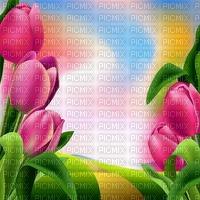 image encre couleur paysage fleurs tulipes printemps edited by me